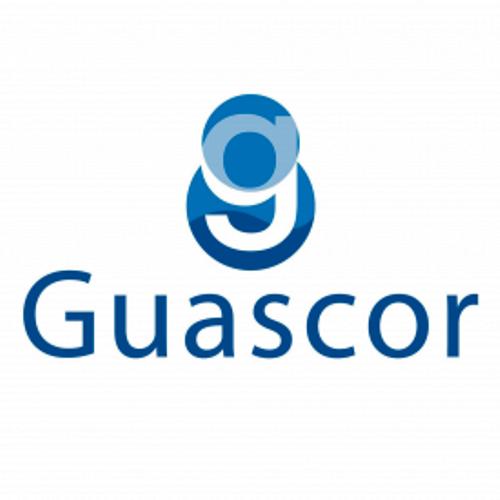 Производители двигателей GUASCOR